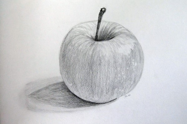 Adult Online Art Course: Drawing for Beginners (4-weeks) – Morning Option