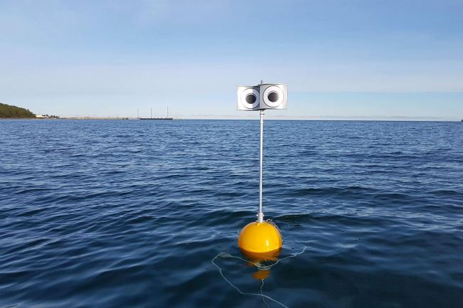 A 'looming-eyed buoy' deterrent deployed within the Küdema Bay, Estonia (Andres Kalamees/PA)