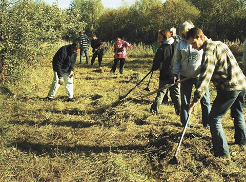 Green Gym volunteers demonstrate teamwork in clearing meadows in Colne River Park