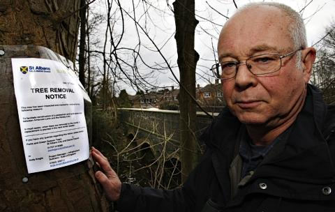 Alan Jackson said members of the public have not been properly informed of the plans to demolish the trees.