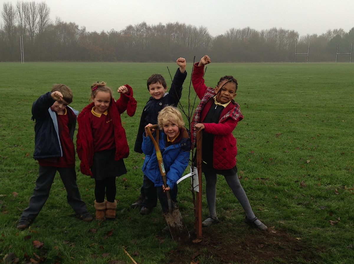 Pupils take time out from Christmas celebrations to plant fruit trees