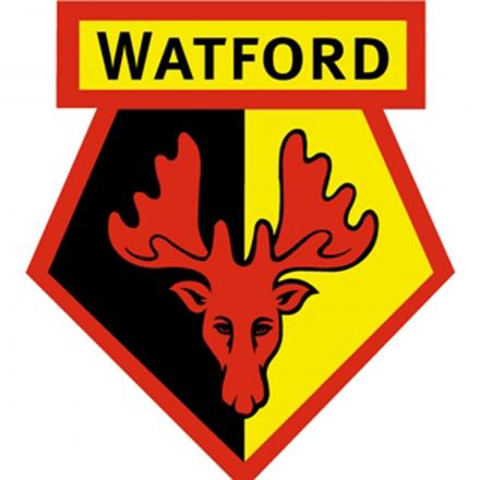 St Albans to face Watford next weekend