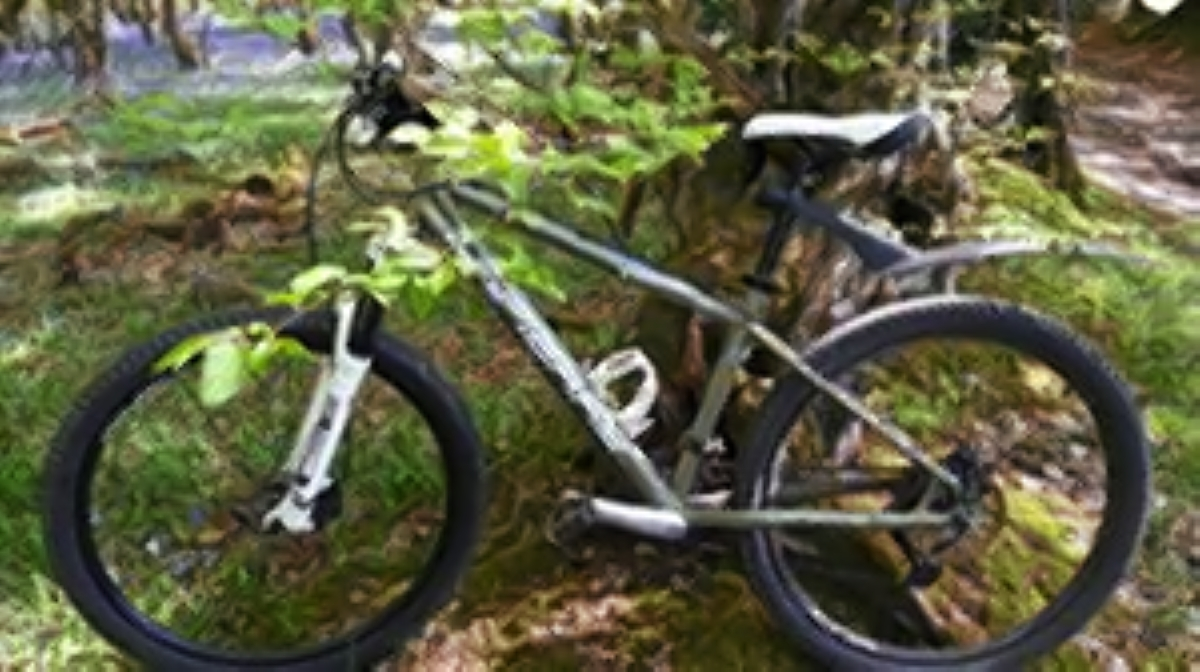 Police appeal after bike stolen from leisure centre