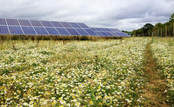 Up to 54 acres of land in Harpenden could be covered with solar panels