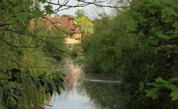 St Albans in Pictures: River Ver and the Abbey