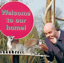 Dominic shows the lemurs the way home