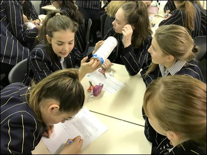 Year 9 girls building an Enigma machine from Pringle boxes