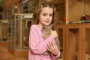 Pets at Home to stop selling rabbits over Easter - here's why