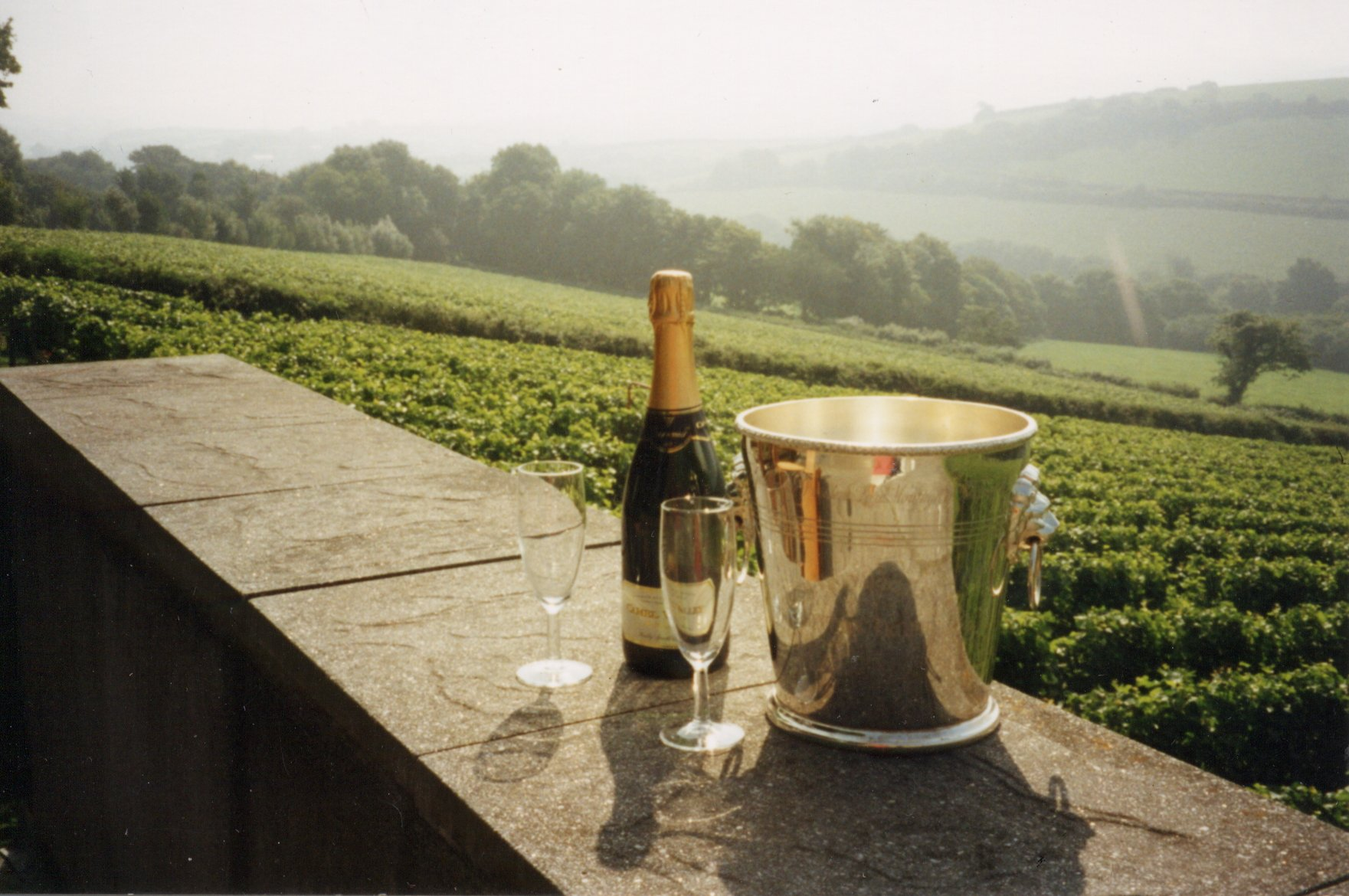 English Wine Dinner at Sopwell House