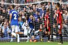 Oumar Niasse equalises for Everton against Bournemouth